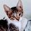ElsyNewells Leprosa's profile photo