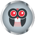Google Plus logo for Red Owl Creations