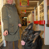 Jonge Hond centrum Emmen - 2012-04-01%2B016.JPG