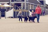 – Familiebesøg - uh, hvor hundene trækker