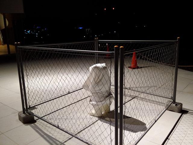 夜富山県美術館シロクマ小
