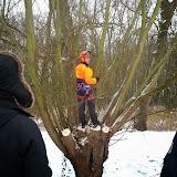 Cursus Knot- & hakhoutbeheer in Wemmel - 26 januari 2013