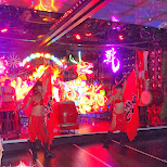 dance show at the Robot Restaurant in Kabukicho in Kabukicho, Tokyo, Japan