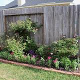 Gardening 2011 - 100_6992.JPG