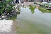 Jalan Serasa Kolam Comberan, Pemerintah Desa Papanloe Bantaeng Mendapat Sorotan