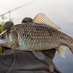 20140503_Fishing_Babyn_009.jpg
