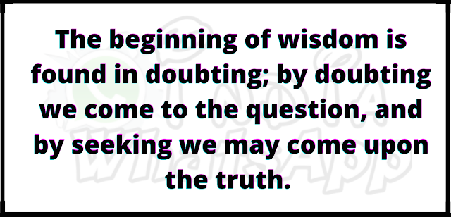 The beginning of wisdom is found in doubting; by doubting we come to the question, and by seeking we may come upon the truth.