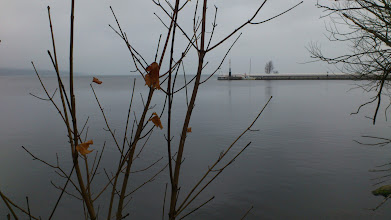 Photo: Late Autumn by the lake.