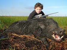 wild-boar-hunting-3.jpg