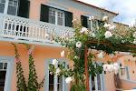 Ein Ferienhaus auf Madeira geht nicht ohne Blumen
