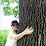 Animalia Daniela Galli's profile photo