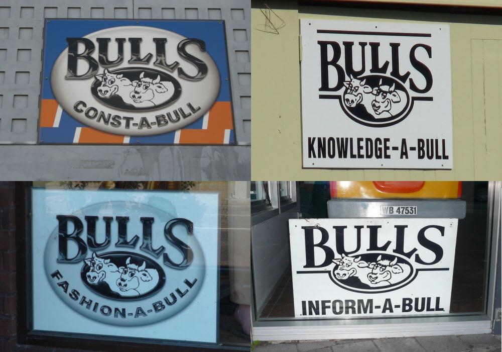 bulls-new-zealand-9