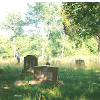 Good tick and chigger country - Gleaves - Clements Cemetery
