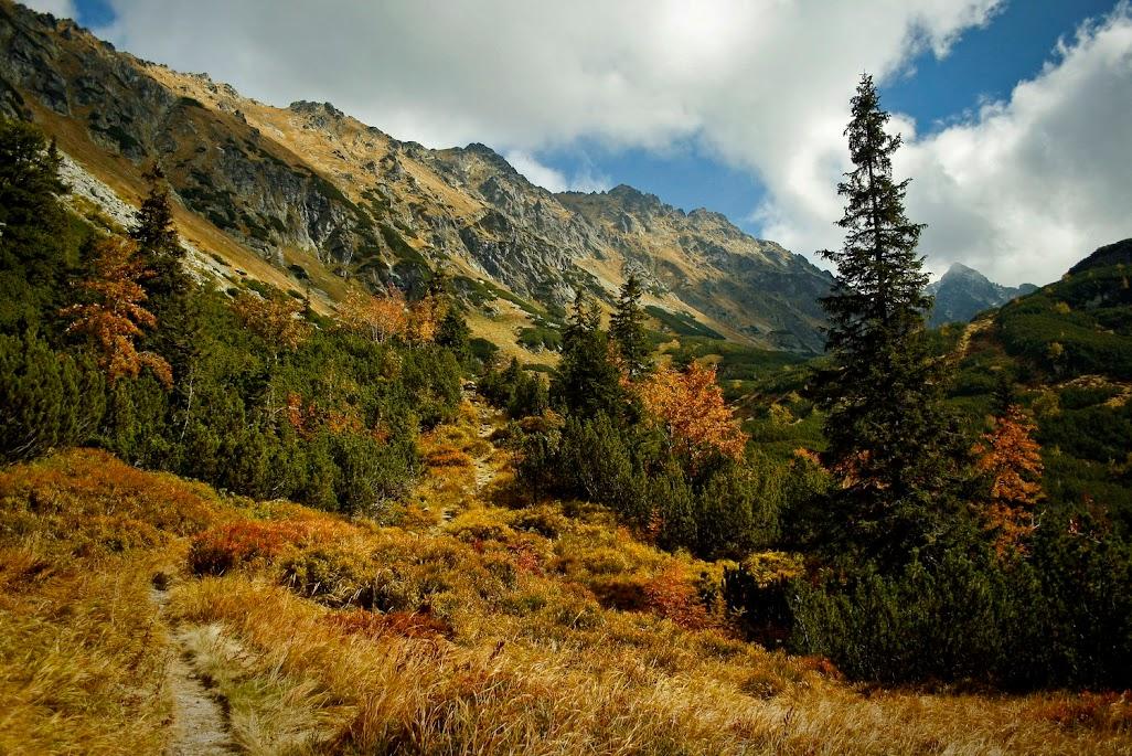 Szlak do Doliny Ciemnosmreczyńskiej
