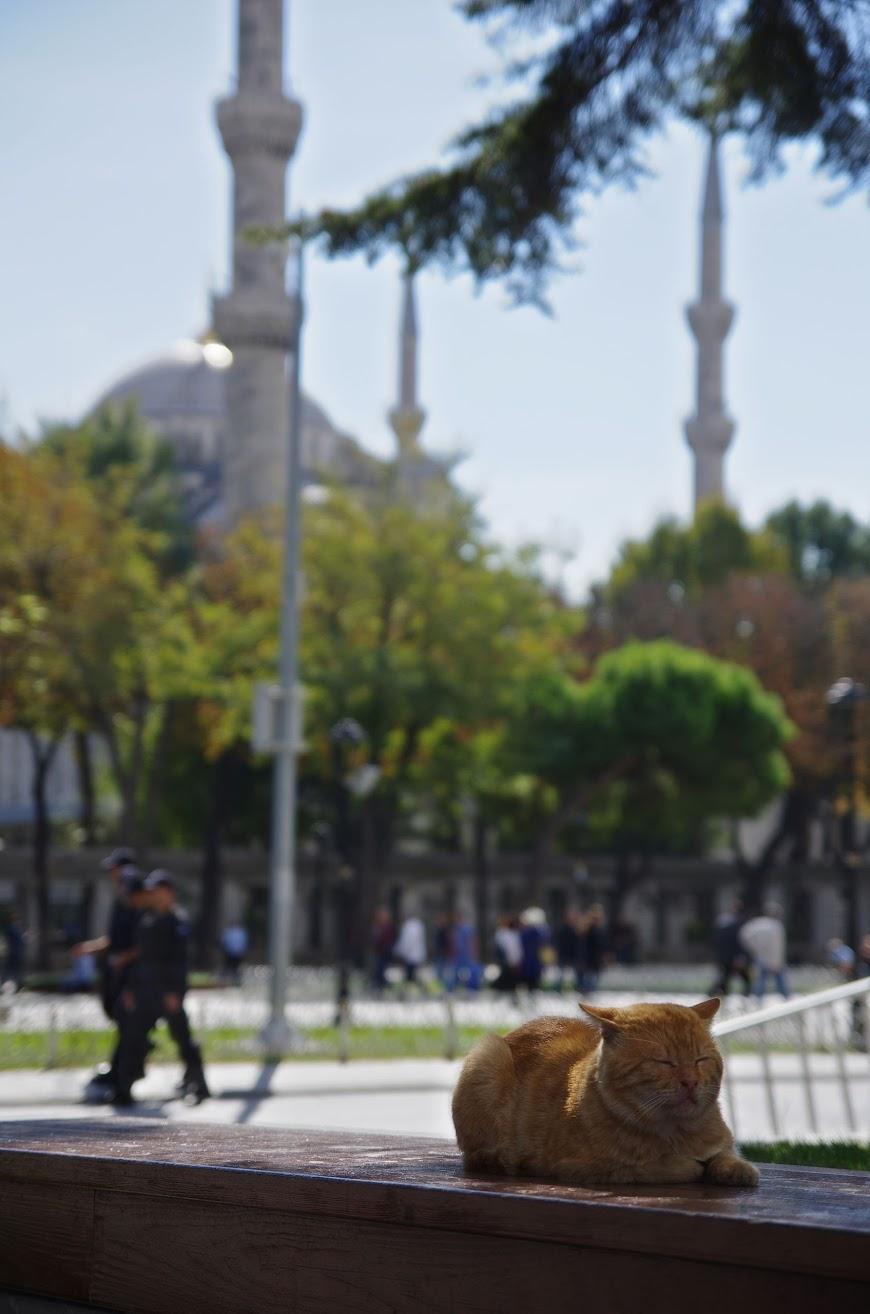 istanbul_2016_0039.JPG