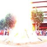 Fotos patinada flama del canigó - IMG_1089.JPG