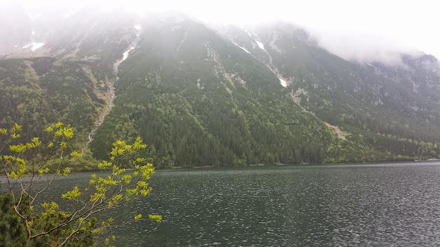Zajęcia terenowe w Tatrzańskim Parku Narodowym - 2014-06-02%2B13.07.02.jpg