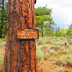 cannell_trail_IMG_1920.jpg