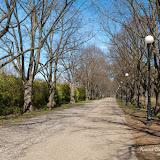 Аллея в парке Ору