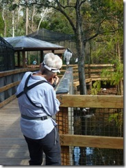 Nancy captures a wood stork
