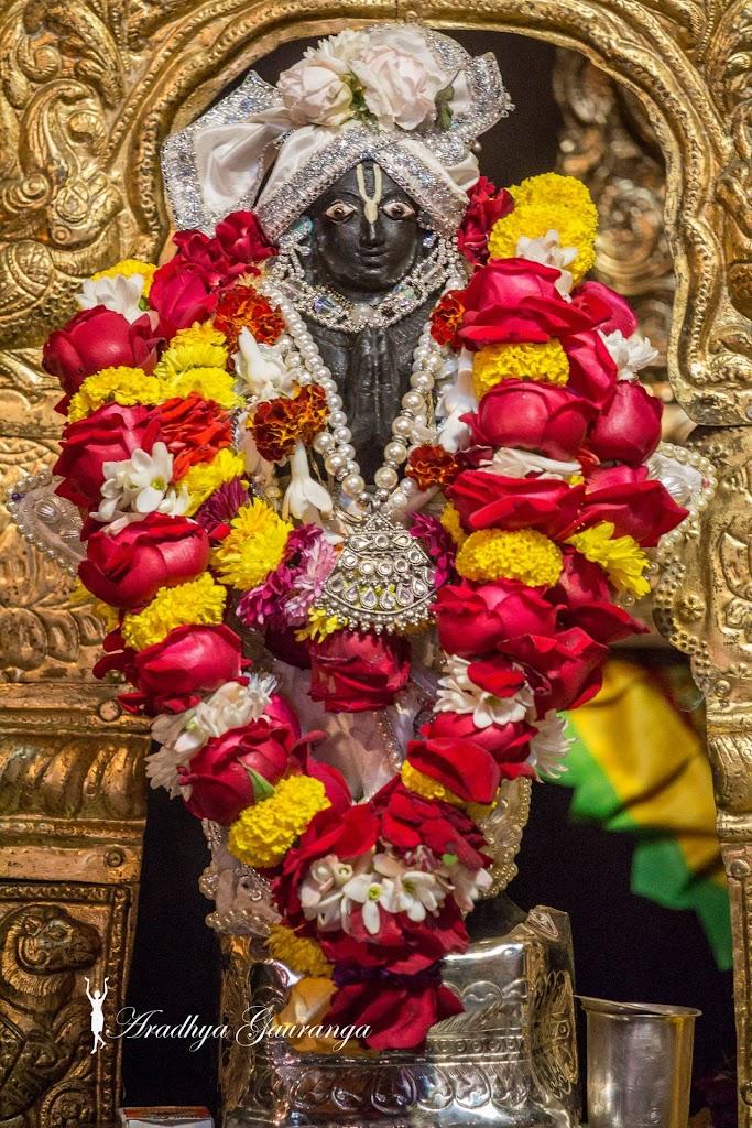 ISKCON Mayapur Deity Darshan 13 Jan 2017 (13)