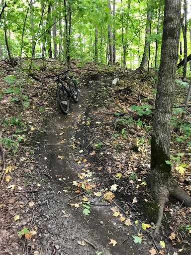 Singletrack segment on main loop. Tacky and firm! September 5th, 2017.