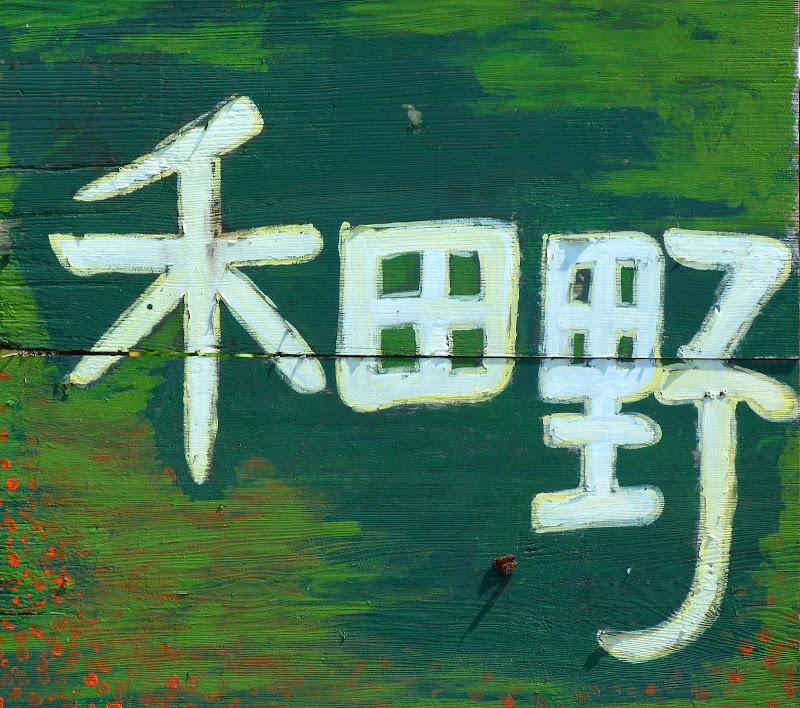 Hualien County. De Liyu lake à Guangfu, Taipinlang ( festival AMIS) Fongbin et retour J 5 - P1240368.JPG
