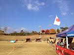 2013-2014 11/16.17 G18 広島・仙養ヶ原大会