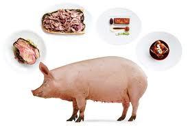 Fakta Penting Di Balik Pengharaman Daging Babi Dan Darah
