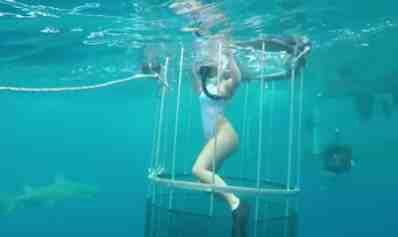 Model's underwater shoot goes horrifically wrong as she's bitten by Shark (photos)