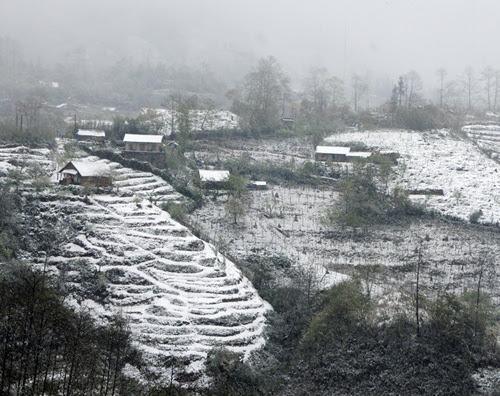 Những thửa ruộng bậc thang phủ trắng tuyết