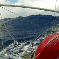 coralsea 18.jpg