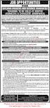 Jobs for Diploma Holders