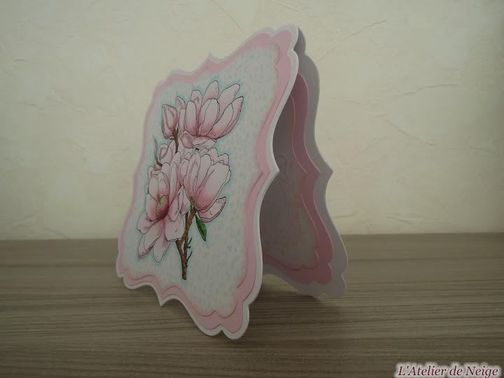 041 - Magnolia
