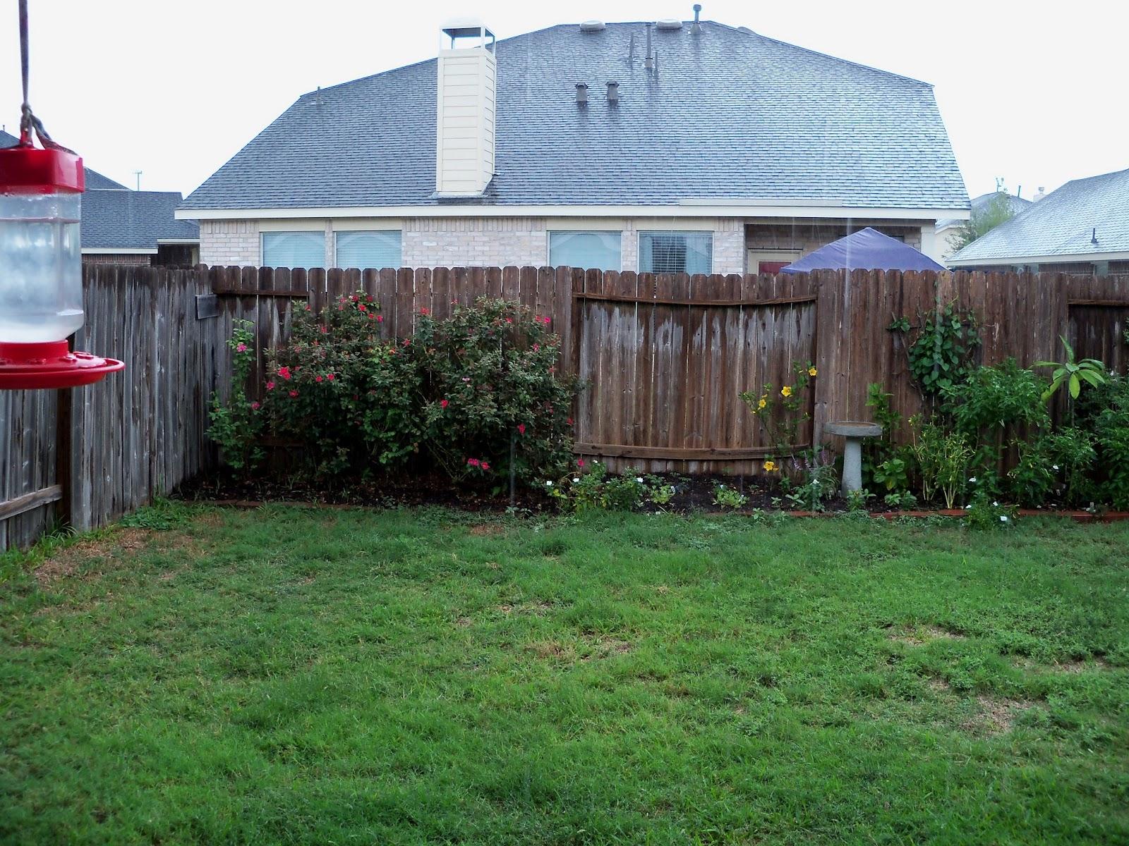 Gardening 2011 - 115_0412.JPG