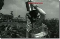 Kanchana Hot 81