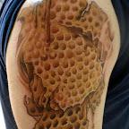 honeycomb640480.jpg