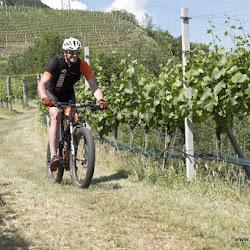 Biobauer Rielinger Tour 31.05.17-1506.jpg