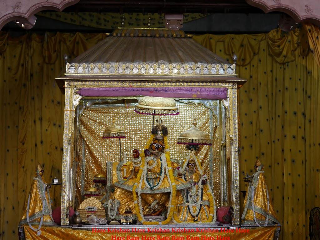 Radha Govind Devji Deity Darshan 2 April  2016  (11)