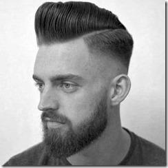 Pompadour fade haircut and beard