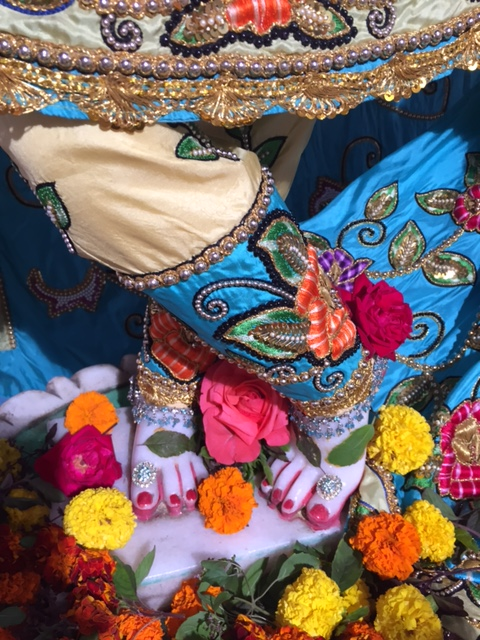 ISKCON Raipur Deity Darshan 04 jan 2017 (4)