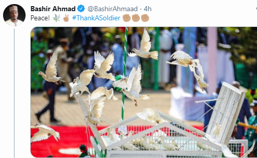 Update: Bashir Ahmad gives reason why the white pigeons refuse to fly at the Armed Forces rememberance day, after been released by president Buhari