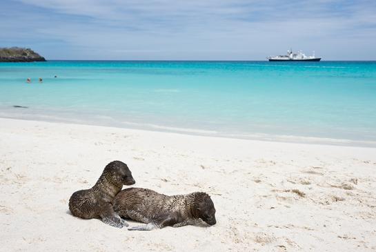 Isla-Santa-Cruz-Galapagos