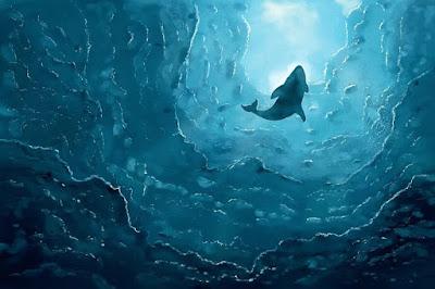 हिंद महासागर में खोजा गया नीली व्हेल का नया जनसंख्या समूह - anokhagyan.in