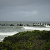 _DSC7258.thumb.jpg