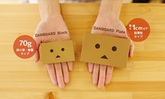 Danboard block and Danboard plate