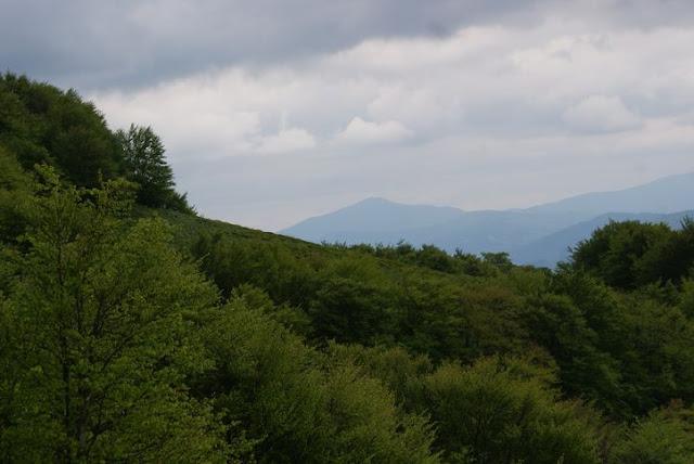 Wycieczka LO Tarnica - DSC06888_1.JPG