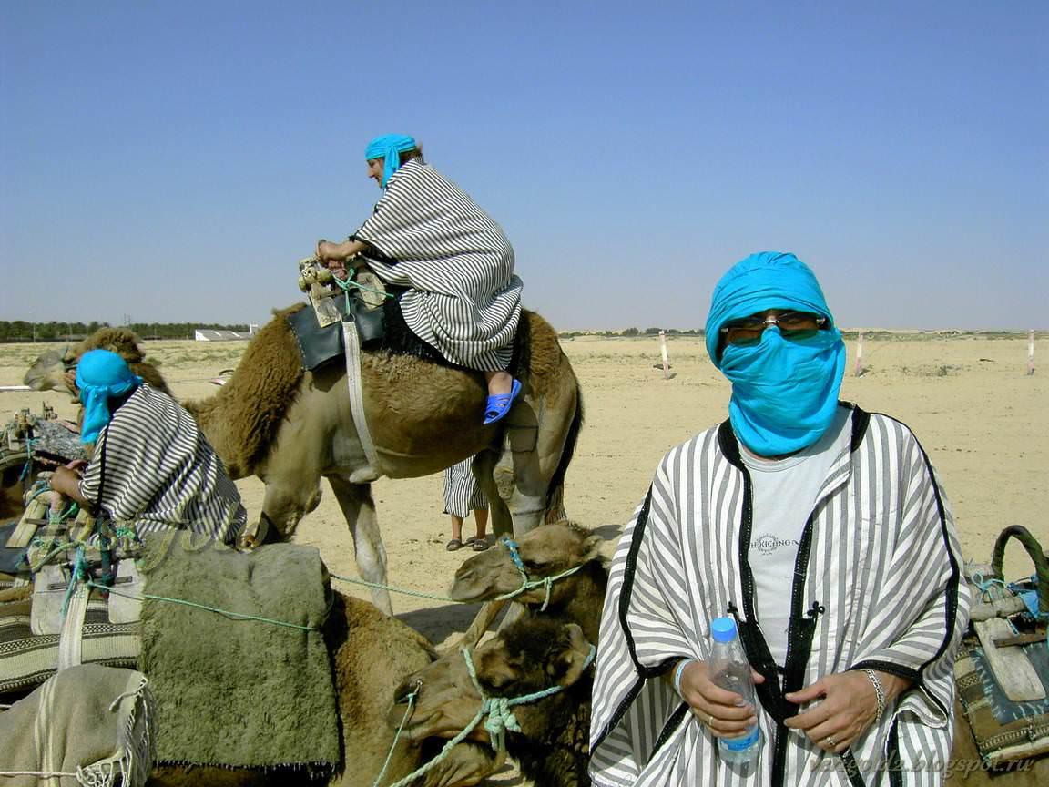 На верблюде по Сахаре