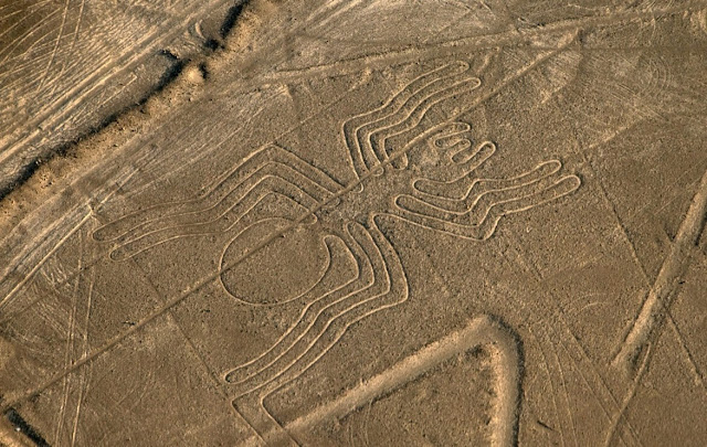 Las líneas de Nazca - La araña - HistoriadelasCivilizaciones.com