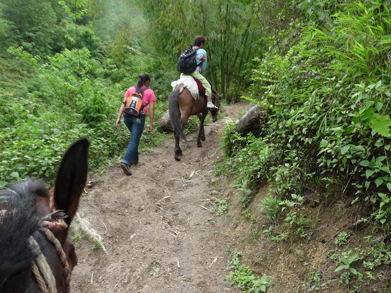 Chine .Yunnan,Menglian ,Tenchong, He shun, Chongning B - Picture%2B924.jpg